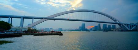 shanghai bridge Banco de Imagens - 84136209