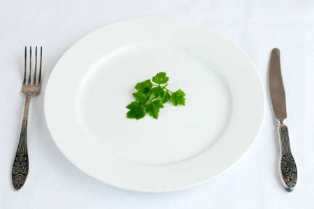 Parsley leaf on the plate with fork and knife on tablecloth Stock Photo
