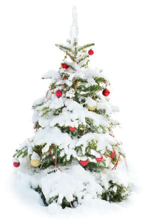 Decorated Christmas tree under snow isolated on white background