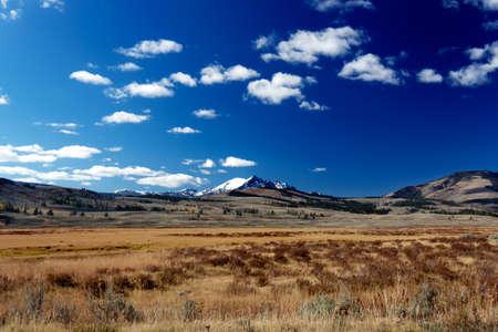 hayden: Yellowstone National Park: Hayden Valley mit Bergen