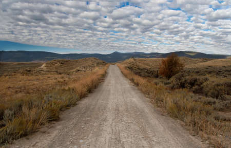 unpaved road: Unpaved Road in Montana
