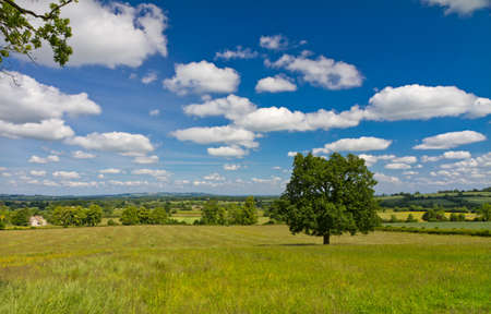 View of the hilly landscape in Cotswolds, Castleton, UK photo