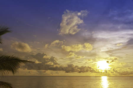 far off: Sunset with palm tree at South Chinese Sea in Phu Quoc, Vietnam Stock Photo