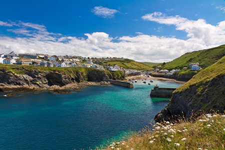 Cove and harbour of Port Isaac with white flowers, Cornwall, England Standard-Bild