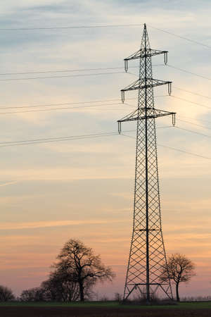 far off: Electricity pylon with trees at sunset, Pfalz, Germany Stock Photo