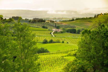 Tuscany landscape near San Gimignano, Italy Stock Photo - 15095222