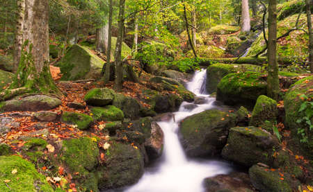black and white forest: Gertelsbacher Waterfalls in autumn, Black Forest, Germany