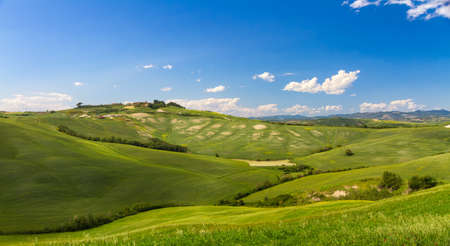 asciano: Hilly landscape with blue skies in Crete Senesi, Asciano, Siena, Italy