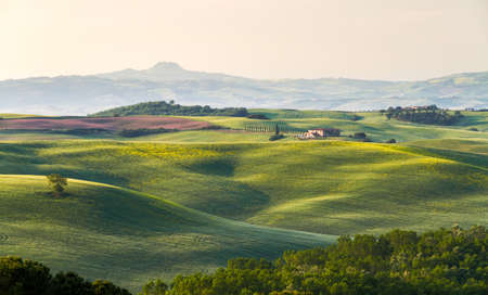cropland: Tuscany landscape with farm, Val dOrcia, Italy Stock Photo