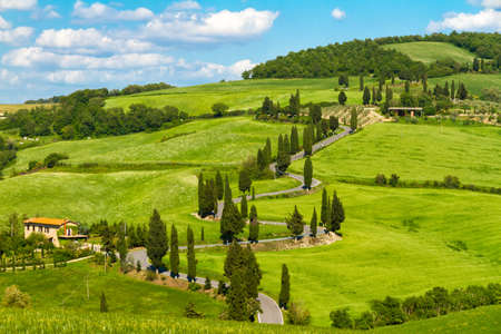 val dorcia: Tuscany road with cypress trees, Val dOrcia, Italy Stock Photo