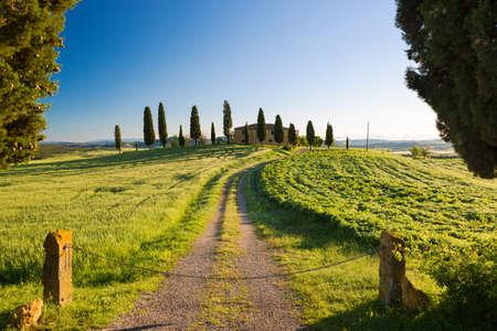 Farmhouse with cypress and blue skies, Pienza, Tuscany, Italy photo