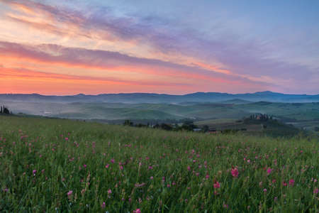 val d'orcia: Val dOrcia after sunrise with violet sky, Tuscany, Italy Stock Photo