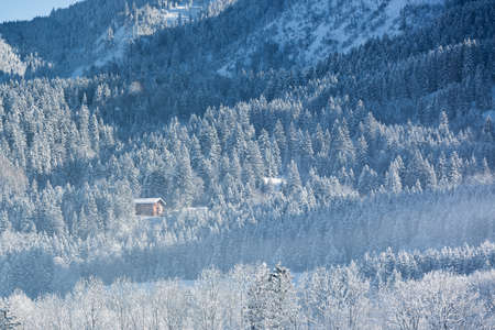 alpine hut: Alpine hut in wintery forest, Bavaria, Germany