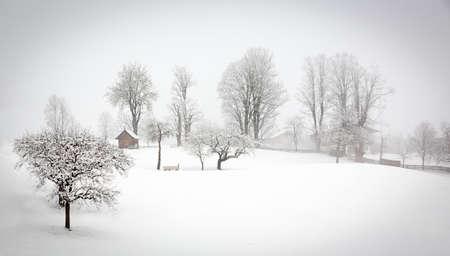 snow covered: Winter landscape in Alps, Tyrol, Wildschönau, Austria