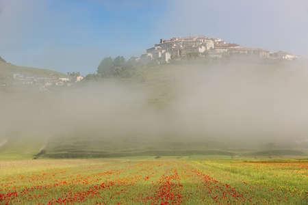 far off: Castelluccio with poppy fields in morning Fog, Umbria, Italy Stock Photo