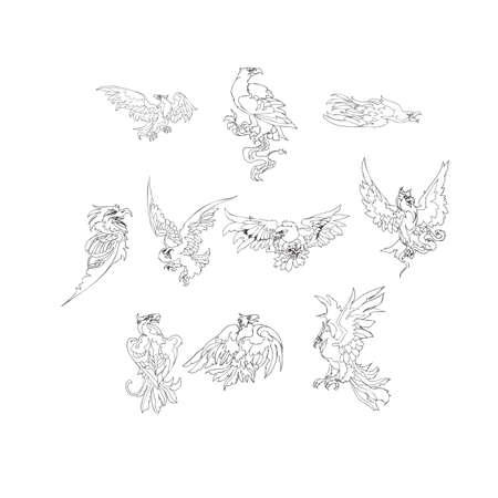 eagle flying: Eagle, flying eagle,the head of an eagle