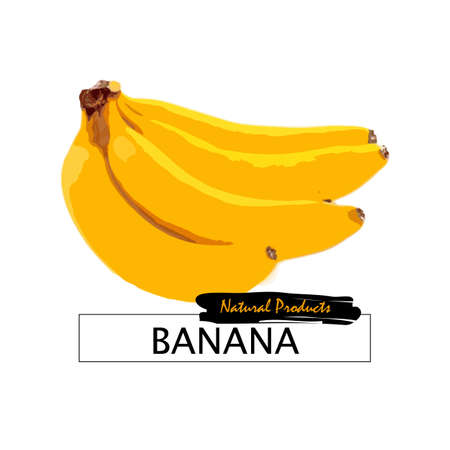 bananas isolated on the white background.Vector eps10