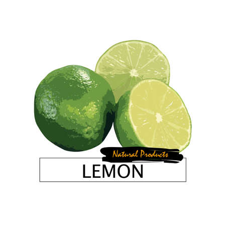 Fresh lemon isolated on white. Vector eps10 Illustration