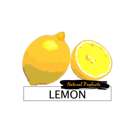 close up food: Fresh lemon isolated on white. Vector eps10 Illustration