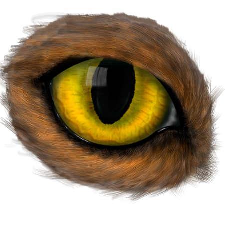 maquillage: Macro image of eye. Beautiful eye close up Stock Photo