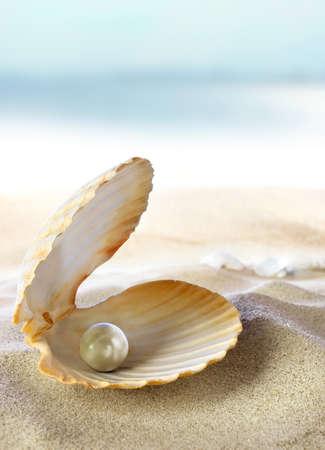 almeja: Abra la ostra con la perla en el fondo de la arena