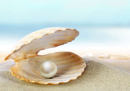 Open oyster with pearl on the background of sand Stock Photo