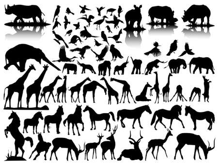 giraffe silhouette:  silhouettes of wildlife Illustration