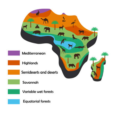 Africa map with details icon.