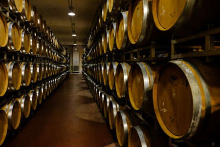 A wine cellar full of oak barrels