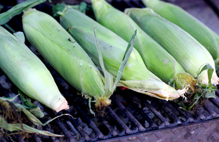 Fresh roasted or grilled corncobs. Grilled green maize corn for sale on the street.