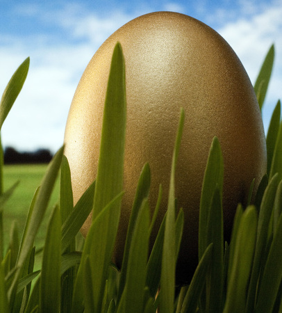 Large gold decorated easter egg in grass on sky background