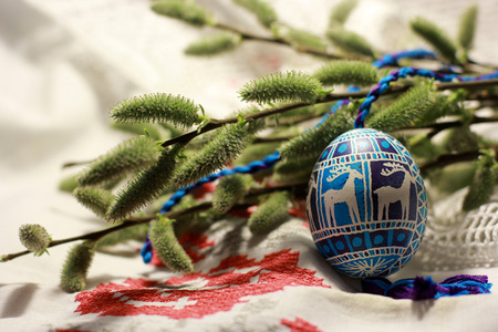 Palm Sunday card. Spring of flowering tree branches with handmade decorated Easter egg.