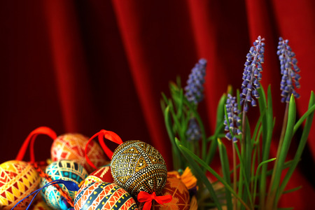 Easter eggs and blue flowers. Template for congratulations card with red cloth background.