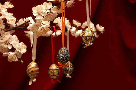 Easter eggs on flowering tree branch. Template for congratulations card with red cloth background. 版權商用圖片 - 71038886