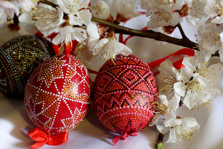 Easter decorated eggs on the white cloth background.  Spring of flowering tree.