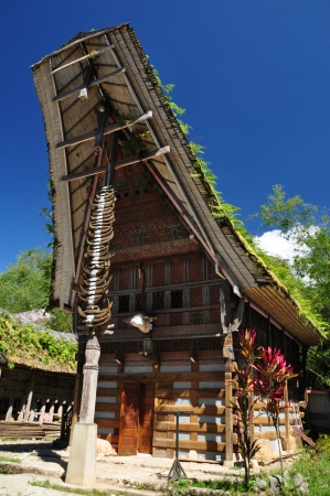 sulawesi: Traditional house  tongkonan  of Toraja ethnic group  Toraja people inhabit the Tana Toraja region in South Sulawesi, Indonesia  Stock Photo