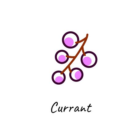 Black currant vector outline icon on white. Berry icon.