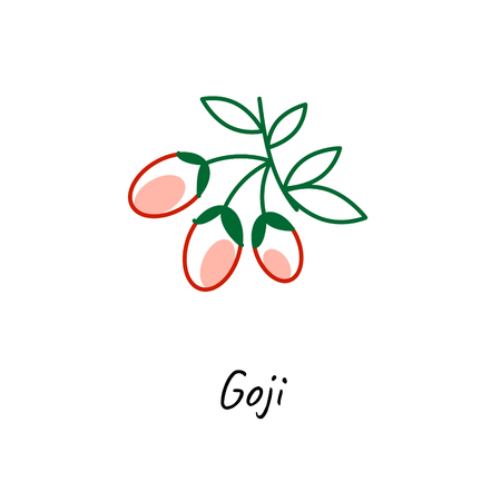 Goji berry icon vector illustration on white. Outline colored style. Ilustração