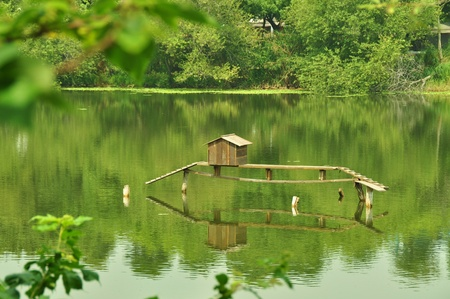 Niaosung Wetland Park is the first park themed as a constructed wetland dedicated to wildlife conservation. Cheng ching Lake, Kaohsiung, Taiwan