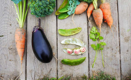 top down: Organic vegetable lay down on the wood table by top view