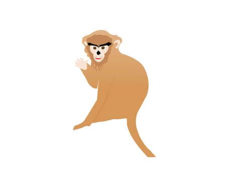 jumping monkeys: isolated monkey