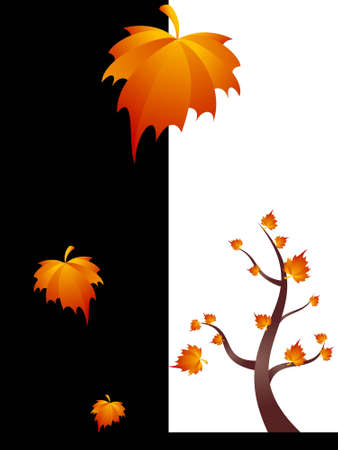 maple tree and leaves on monocolor background