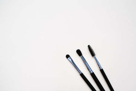 cosmetic makeup brushes for makeup artists on a light uniform background