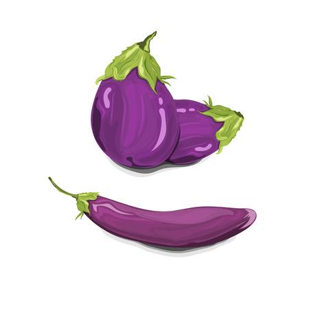 purple eggplants illustration Ilustracja