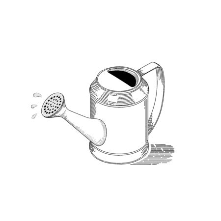 Isometric watering pot, line artwork