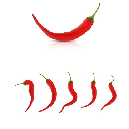 High detailed vector peppers and set of different chilis Ilustracja