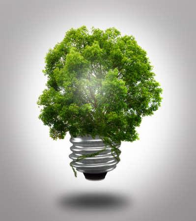 green light bulb: eco bulb