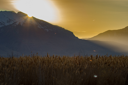 Sun peaking over the mountains resulting in a lens flare with dry grass in the foreground