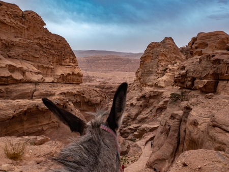 Looking at the dramatic sky and desert landscape while sitting on a donkey