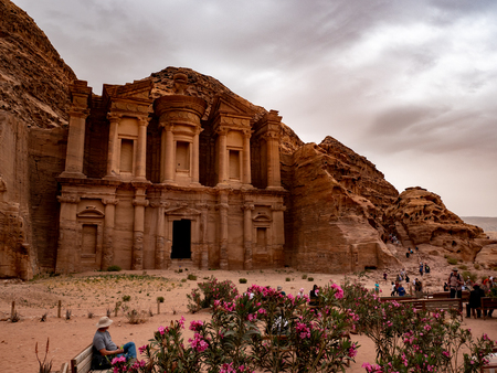Pink wild desert flowers growing in front of the monastery at Petra, Jordan as a storm comes in Stok Fotoğraf